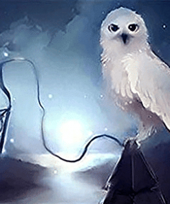 Fantasy Owl Paint by numbers