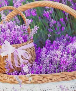 Lavender Basket Paint by numbers