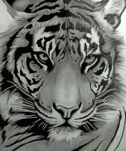 Monochrome Tiger paint by numbers