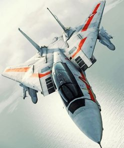 F14 Airplane Paint by numbers