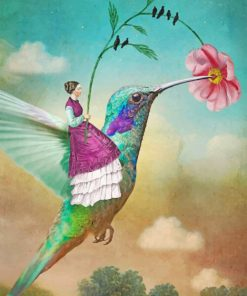 Hummingbird And Woman Paint by numbers