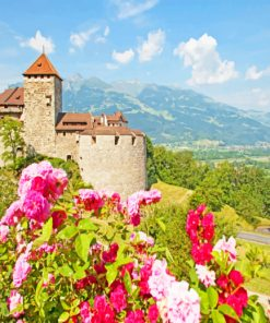 Lichtenstein Castle paint by numbers