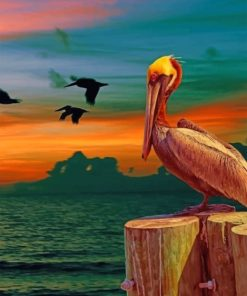 Aesthetic Pelican Bird paint by numbers