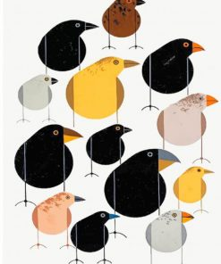 birds-charley-harper-paint-by-number