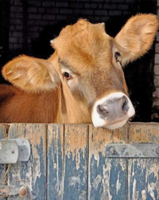 brown-cow-paint-by-number