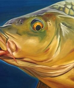 carp-fish-paint-by-number