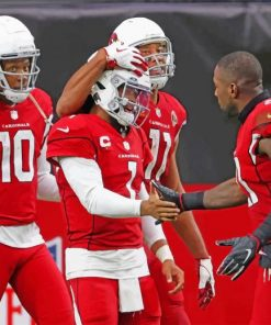 football-cardinals-team-paint-by-number