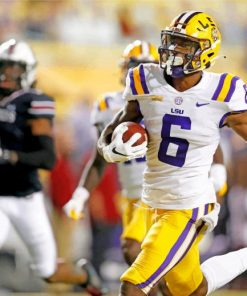 lsu-tigers-player-paint-by-numbers