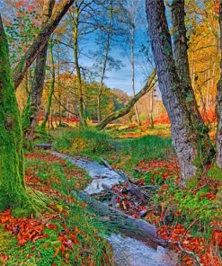 woodland-paint-by-number