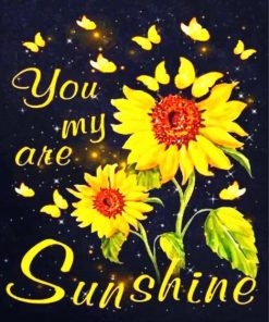 you-are-my-sunshine-paint-by-numbers