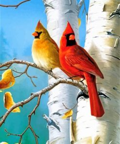 Cardinal Birds paint by numbers