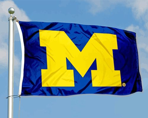 University Of Michigan Flag paint by numbers