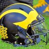 Michigan Wiolverines Football Helmet paint by numbers