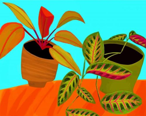 Philodendron Pots paint by numbers